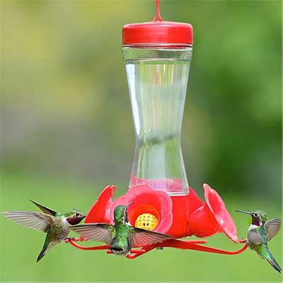 glass orb hummingbird feeder unique triple products feeders bird humming