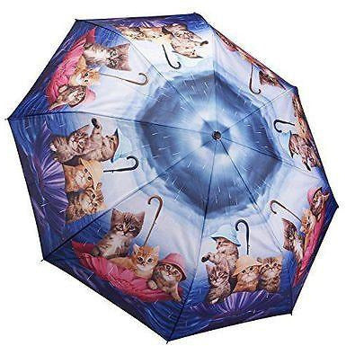 Umbrella Kittens Ahoy by Galleria