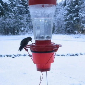 Hummer Hearth Hummingbird Feeder Heater (Feeder Excluded)
