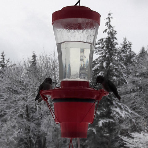 Image of Hummer Hearth Hummingbird Feeder Heater (Feeder NOT included)