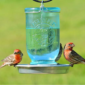 Perky Pet Mason Jar Bird Waterer