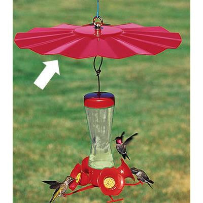 Hummingbird Weather Guard