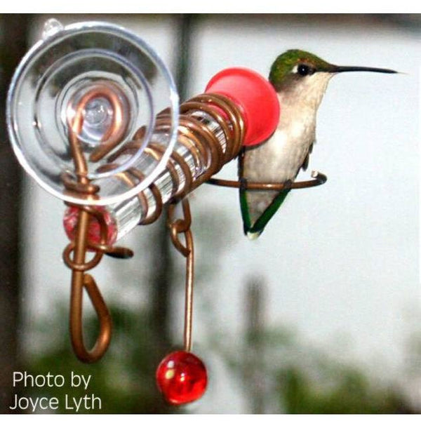 Holland Hill Window Single Hummingbird Feeder