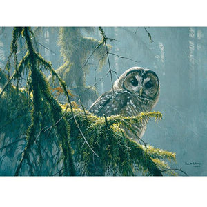 Spotted Owl Mossy Branches 500 Piece Puzzle