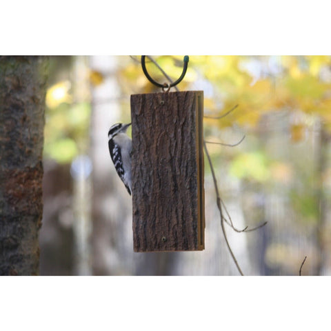 Image of Suet Sandwich Suet Feeder