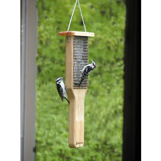 Double Cedar Tail Prop Suet Feeder