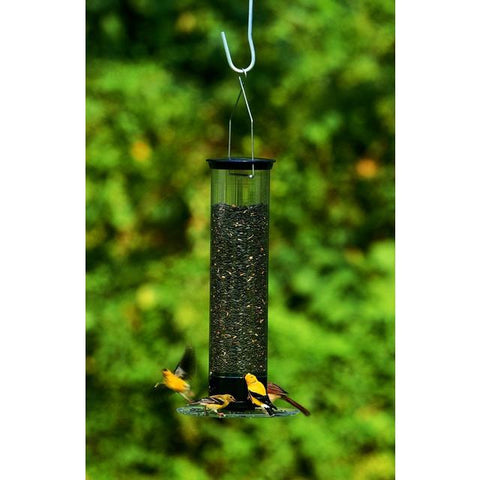 Droll Yankee Tipper Squirrel-Proof Bird Feeder