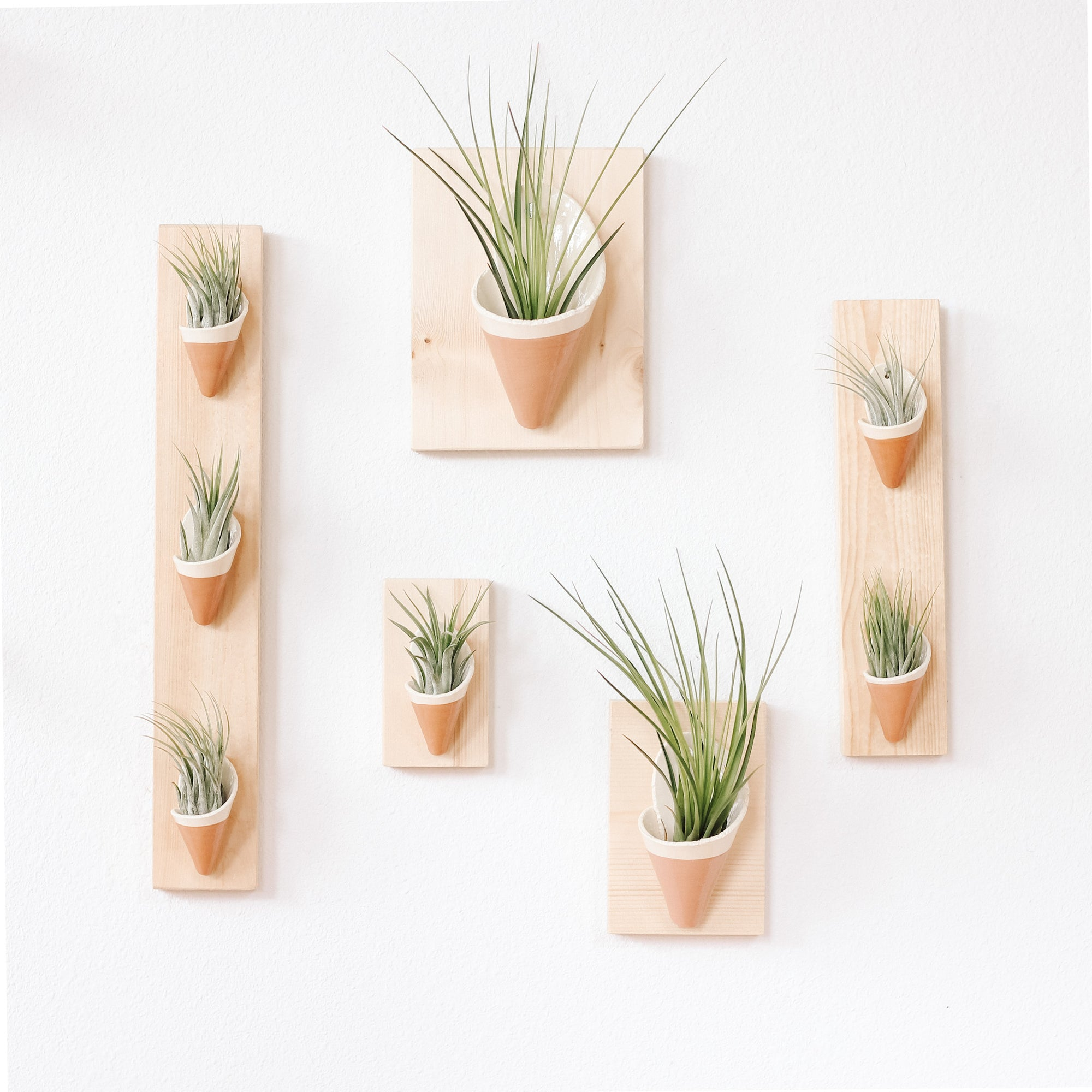 Carter & Rose Wall Planter, Rose Collection