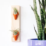 Carter & Rose Wall Planter, Terra Cotta Collection