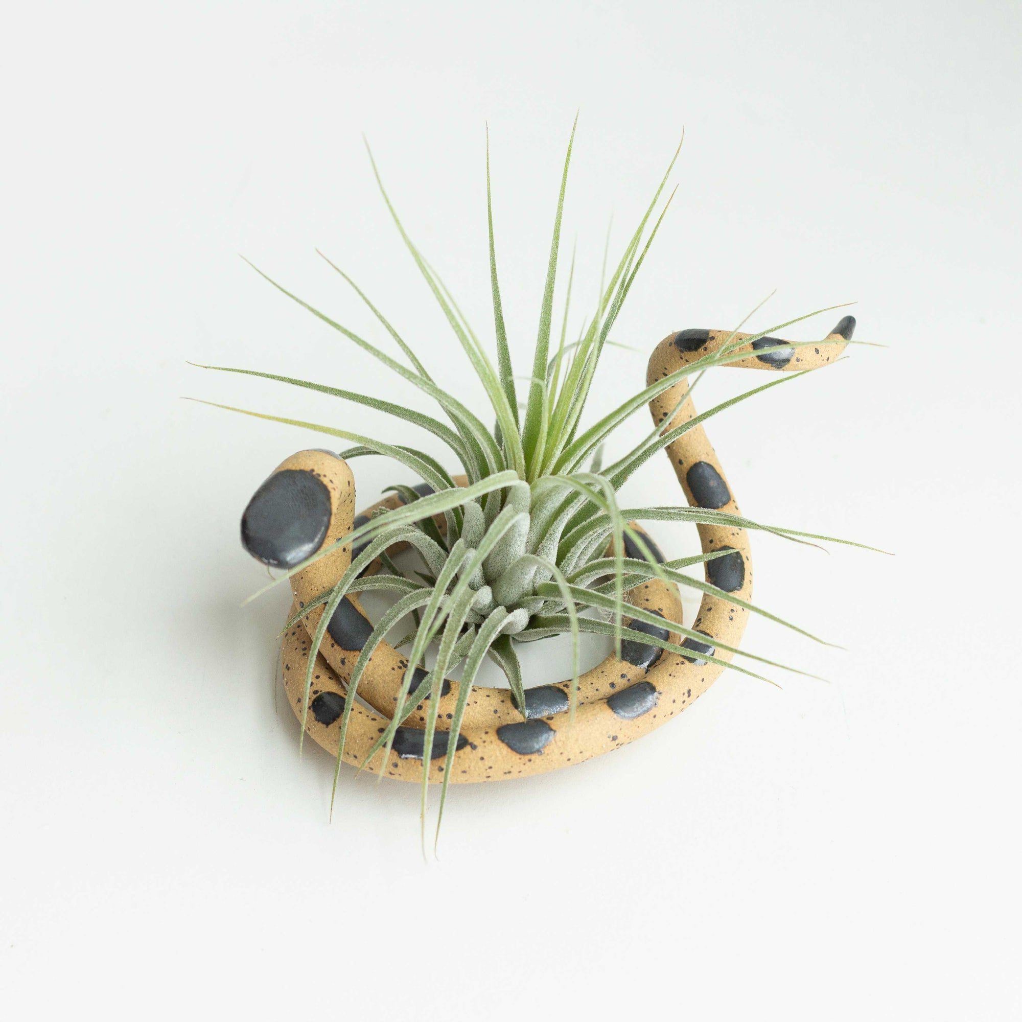 Carter & Rose, Medium Ceramic Snake