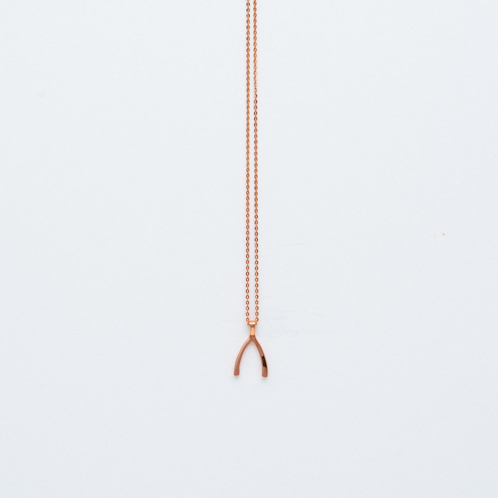 NSC - Wishbone Necklace in Gold Plated