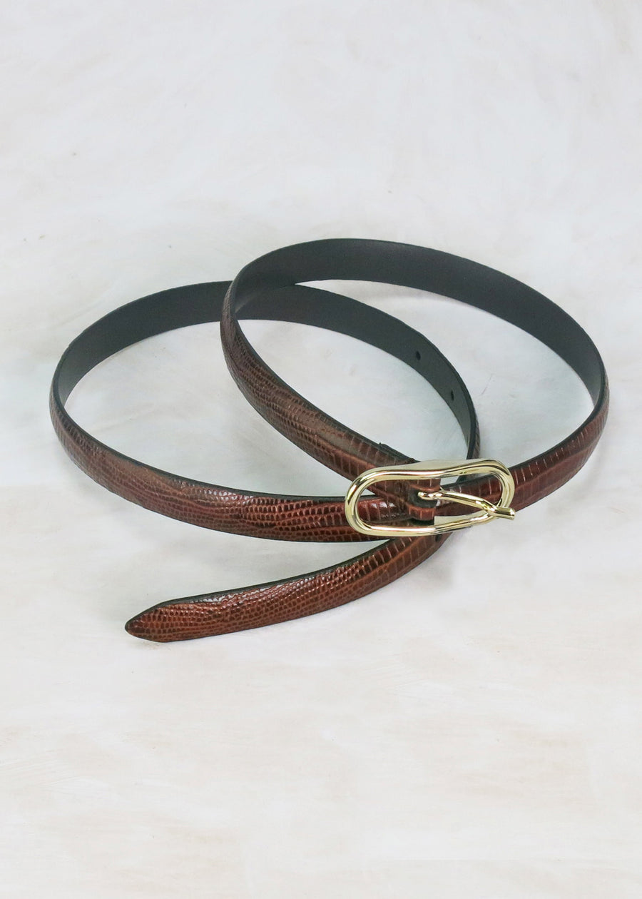 Anderson's Thin Belt Snake