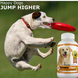 Amazing Turmeric for Dogs Curcumin Pet Antioxidant, Eliminates Joint Pain Inflammation