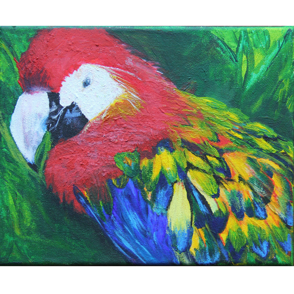 Colourful parrot painting