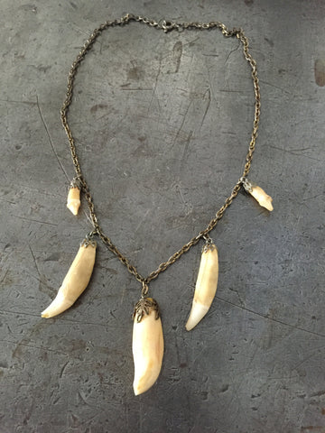 Vintage Brass Chain & Animal Tooth Necklace