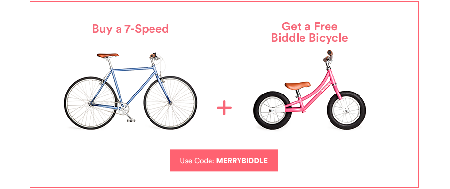 family bicycle deal