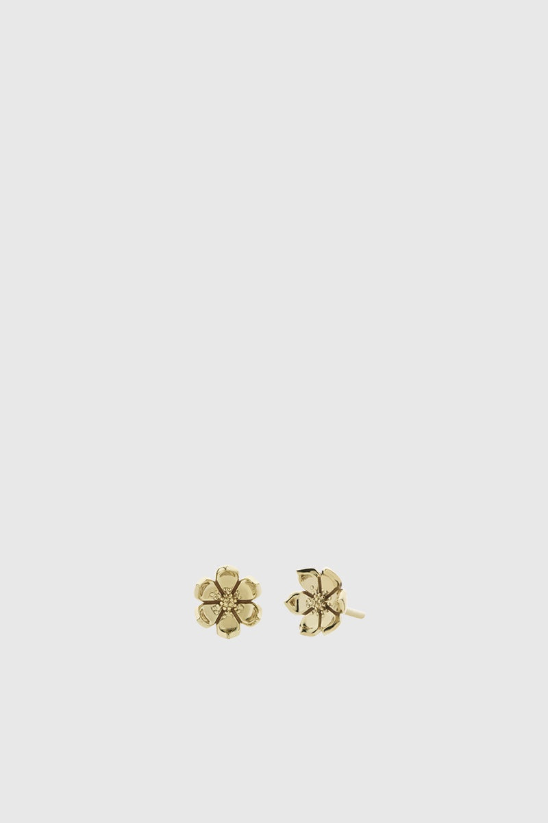 Eden Stud Earrings - Gold Plated