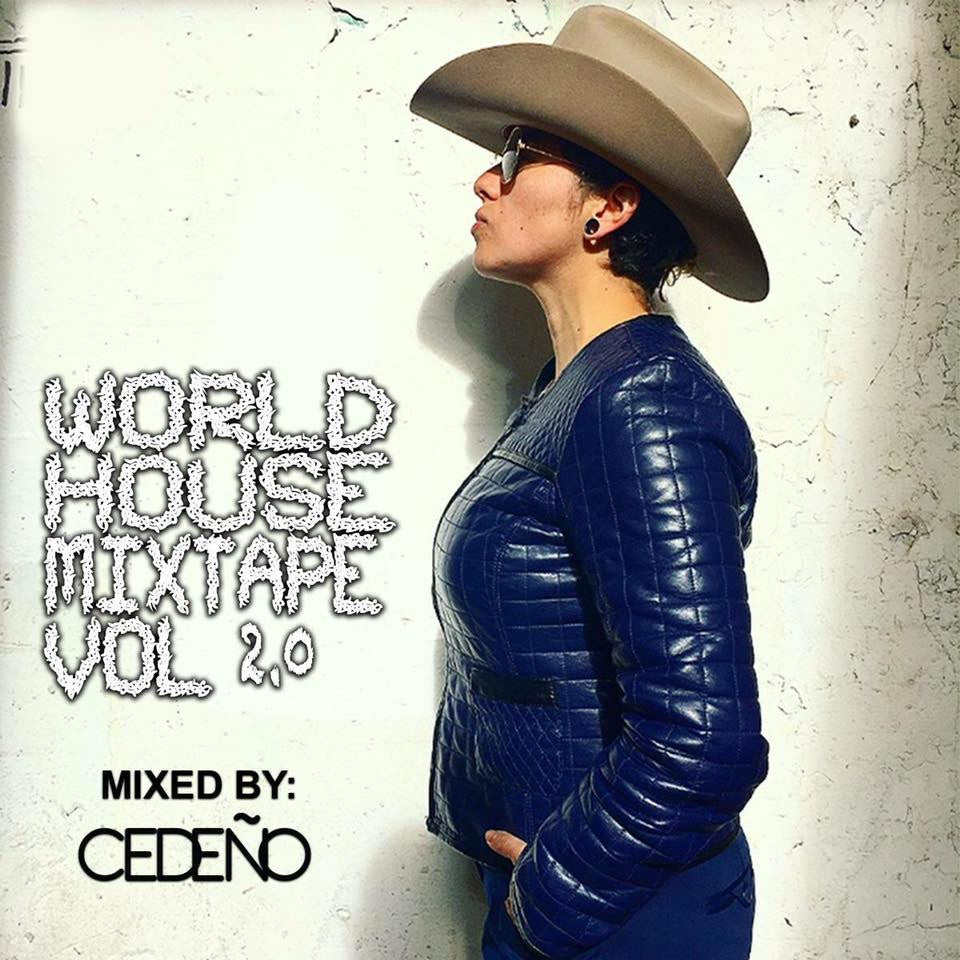World House Mixtape Vol. 2 (New CD)