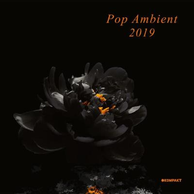 Pop Ambient 2019 (New 2LP)