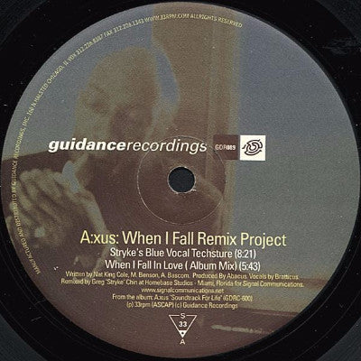 "When I Fall Remix Project (New 12"")"