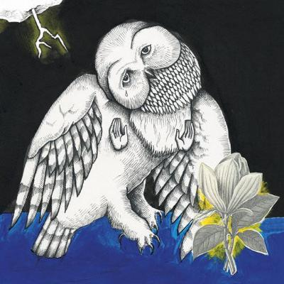 The Magnolia Electric Co (10th Anniversary Deluxe Edition) (New LP + Download)