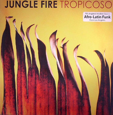 Tropicoso (New LP)