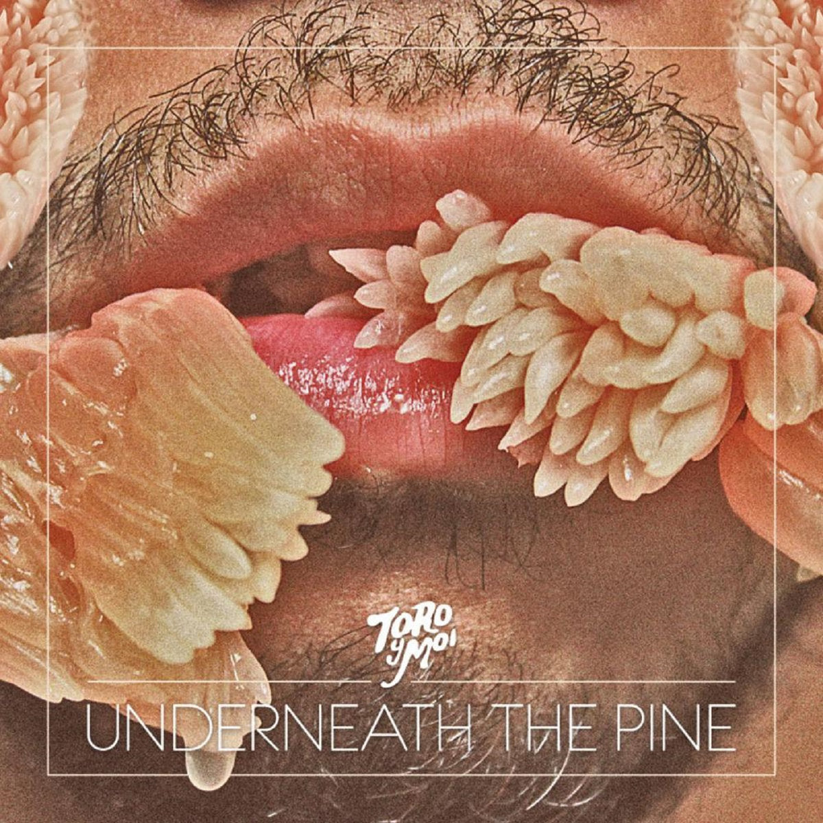 Underneath The Pine (New LP)