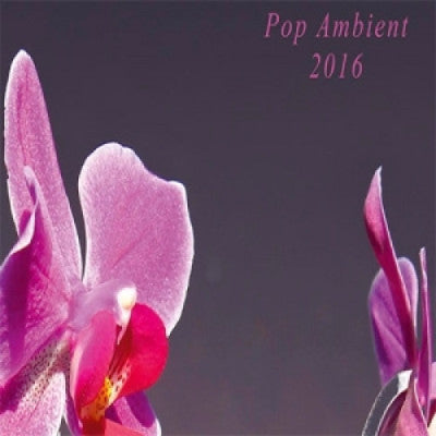 Pop Ambient 2016 (New LP)