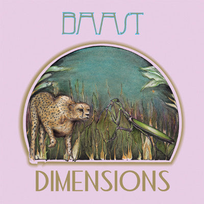 Dimensions (New LP)