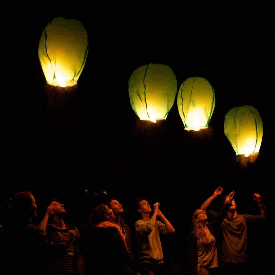 chinese lanterns floating in the sky