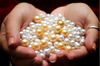Our General Manager of Retail Operations explains why Gold Pearls are so rare