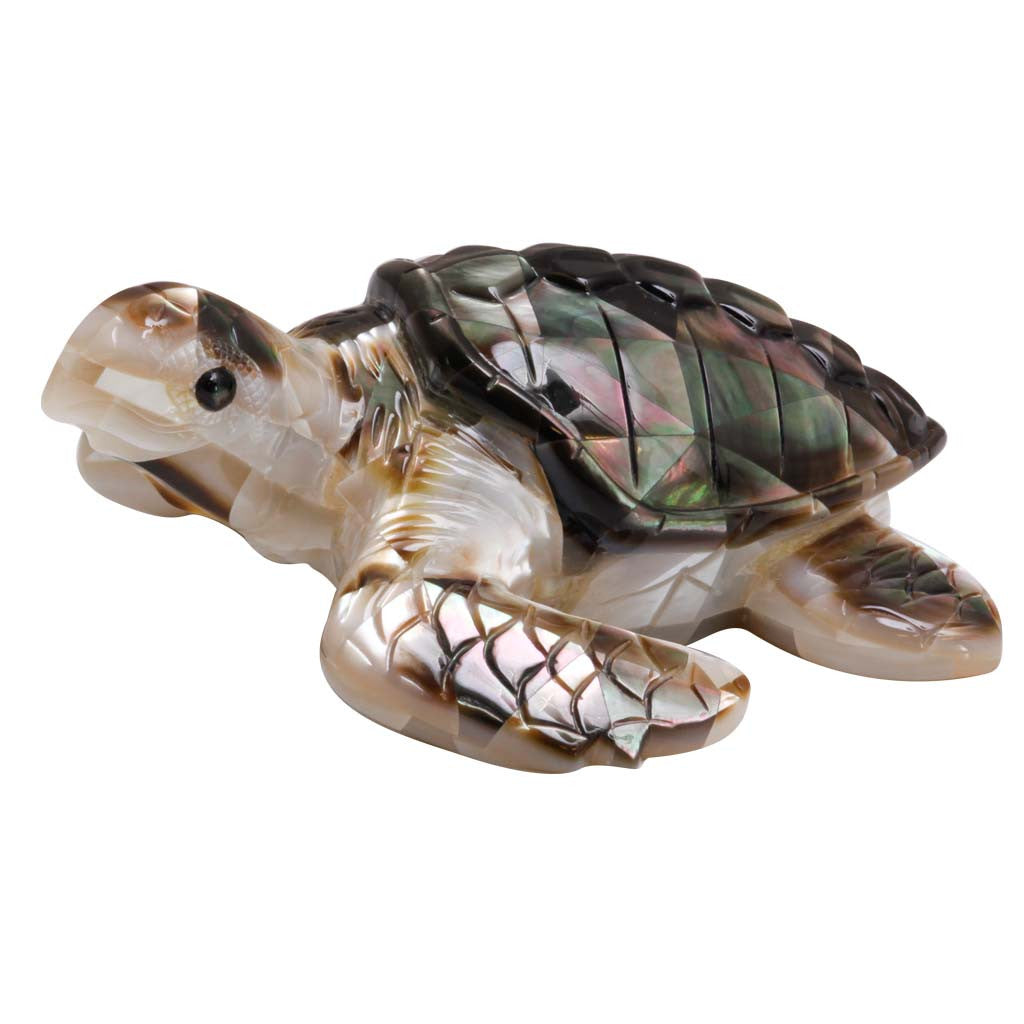 Mother of Pearl Black Turtle 3""