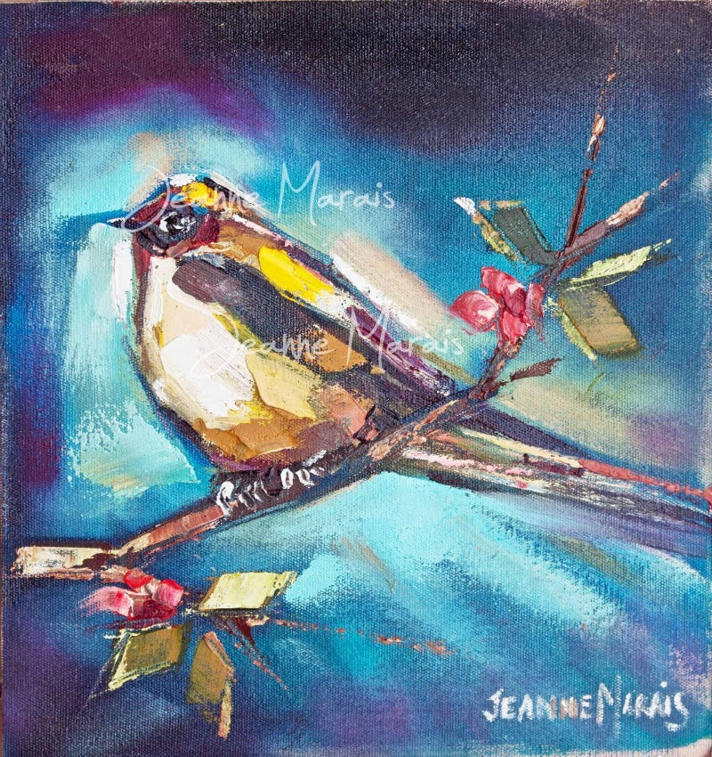 White sparrows right - Jeanne Marais