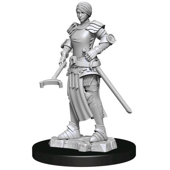 *Pre-order* WizKids - Deep Cuts Unpainted Miniatures: Towns People: Castle 2 (ETA August)