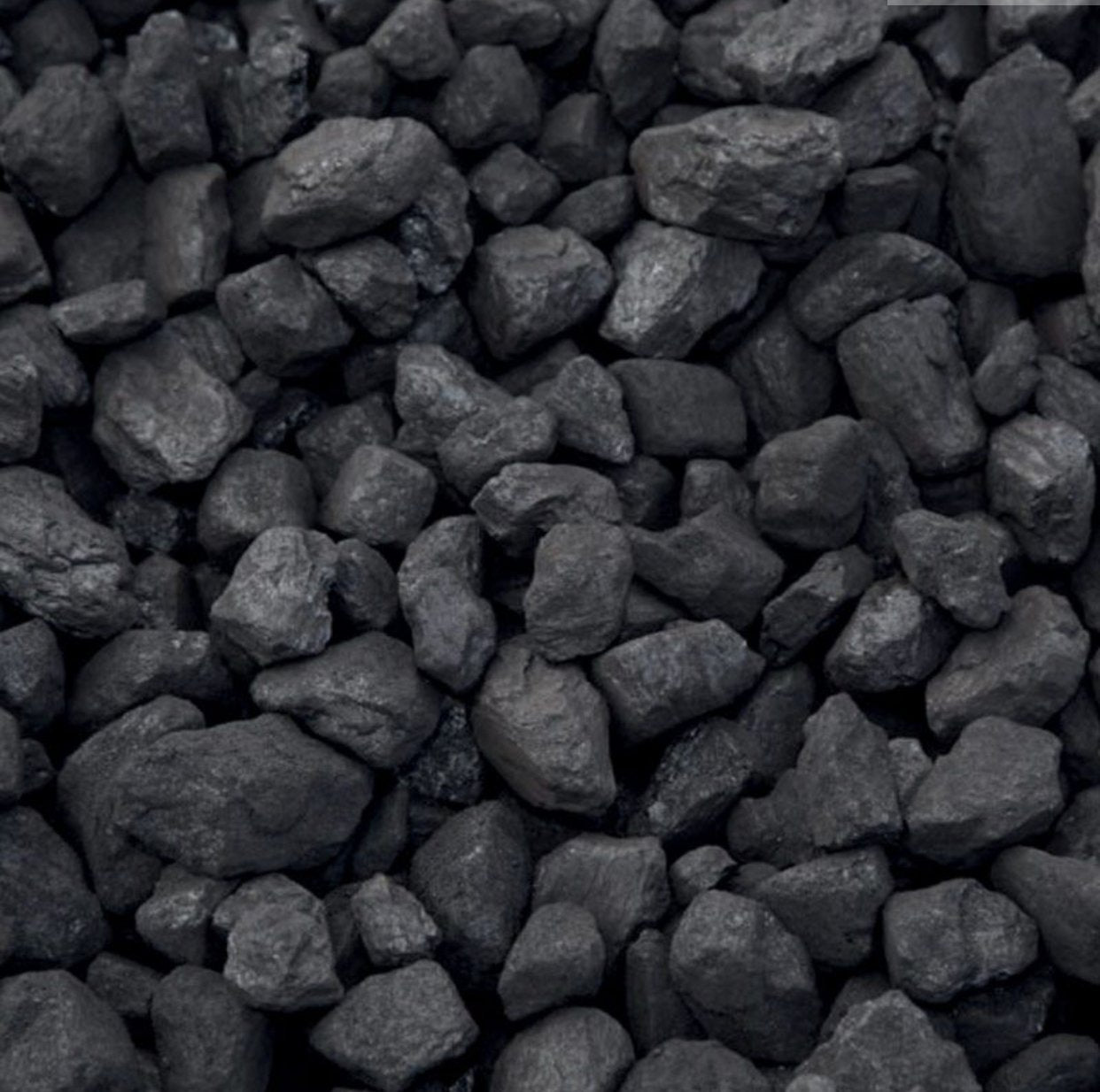 Premium Plus Coal Doubles 25Kg
