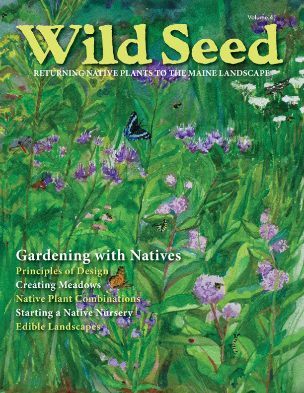 Cover of the 2018 Wild Seed, Volume 4, magazine of Wild Seed Project