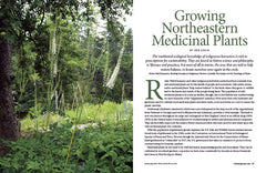 Wild Seed Magazine Volume 5: Growing Northeastern Medicinal Plants