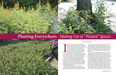 Planting Everywhere: Making Use of Wasted Spaces