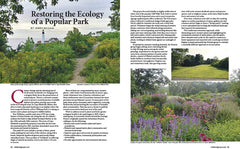 Wild Seed Magazine Volume 5: Restoring the Ecology of a Popular Park