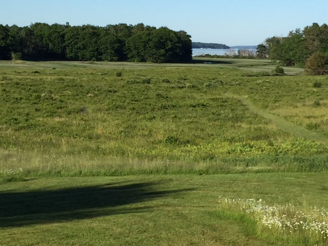 Meadow near Maquoit Bay in Brunswick