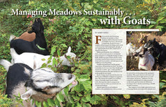 Wild Seed magazine Volume 6 2020: Managing Meadows Sustainably . . . with Goats