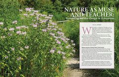Wild Seed magazine Volume 6 2020: Nature as Muse and Teacher: Grounding Garden Design in Ecosystems