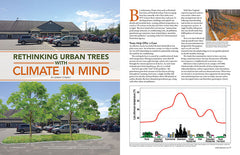 Wild Seed magazine Volume 6 2020: Rethinking Urban Trees with Climate in Mind