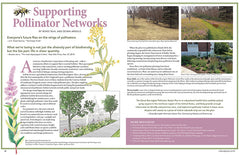 Wild Seed magazine Volume 6 2020: Supporting Pollinator Networks