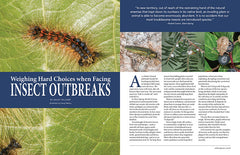 Wild Seed magazine Volume 6 2020: Weighing Hard Choices when Facing Insect Outbreaks