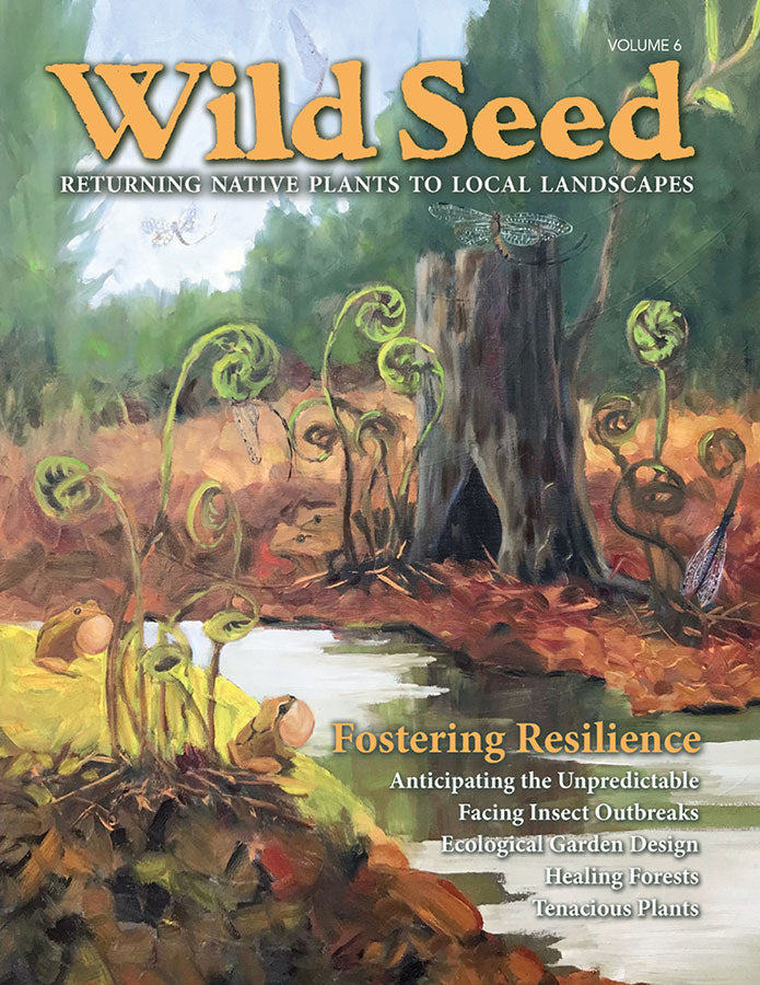 Wild Seed magazine Volume 6: Fostering Resilience. This issue includes 64 pages focused on fostering resilience and full of engaging stories and practical guidance to help you better appreciate the importance of native plants.