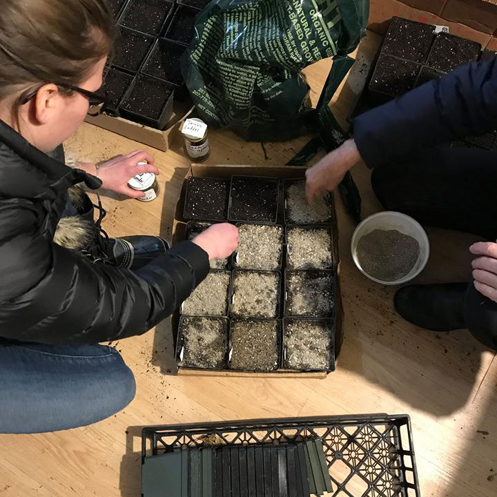 Native Seed Sowing Workshop