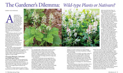 Wild Seed Magazine Volume III: Wild-type Plants or Nativars