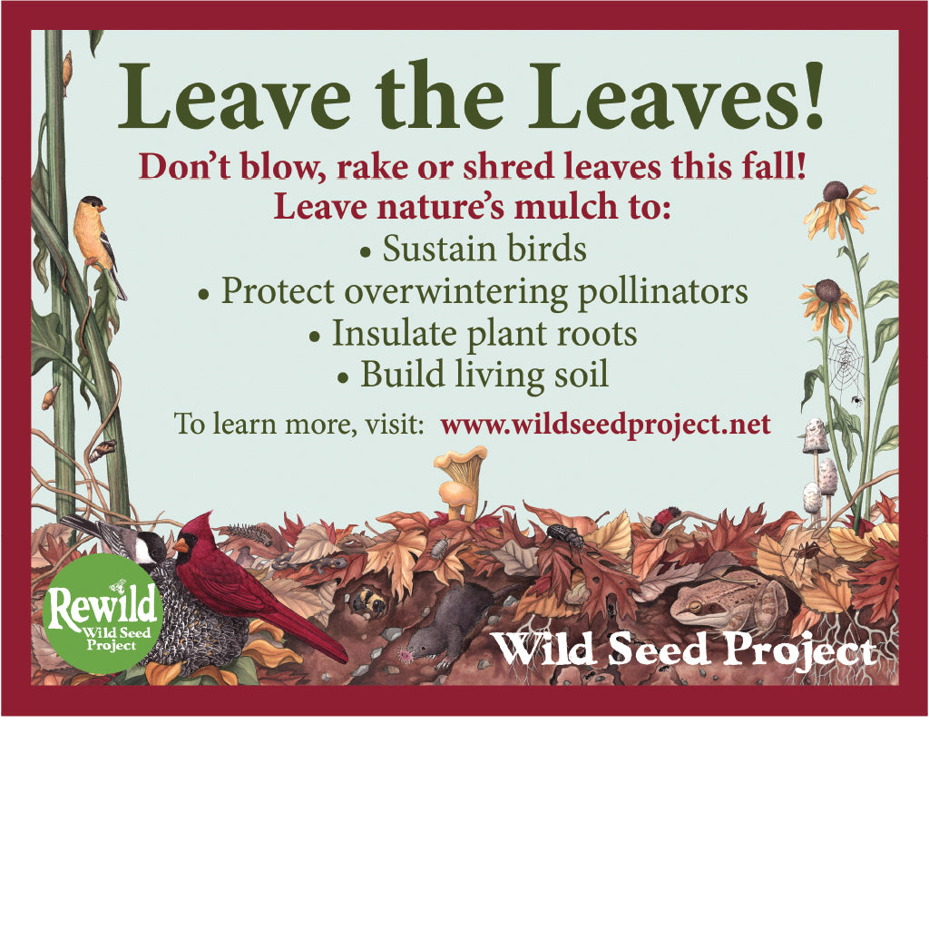 Leave the Leaves! Yard Sign