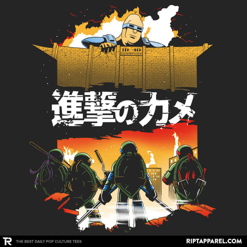 Attack on Turtle - Collection Image - RIPT Apparel